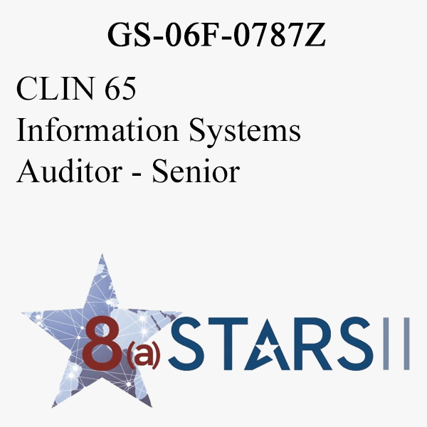 STARS II CLIN 65 Information Systems Auditor Sr